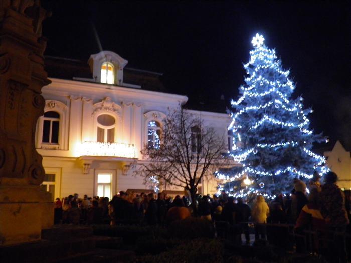 V předvečer jarmeku se rozzáří vánoční strom města  Tiskové zprávy ... dca0418066